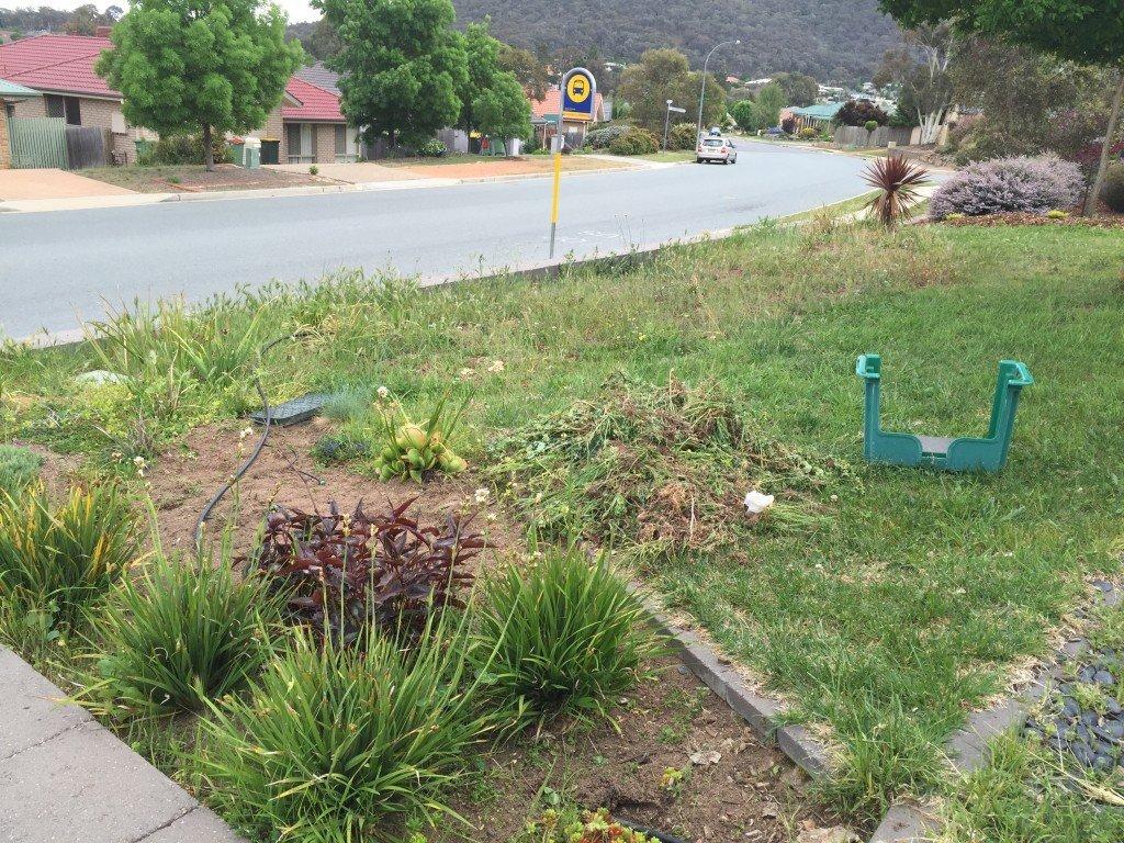 2015-10 garden weeding2